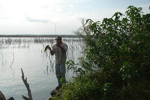 Servicios-pescadeorilla